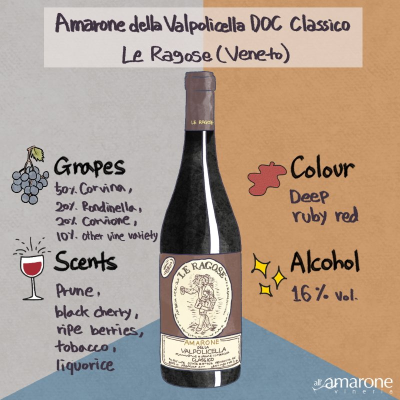 Amarone della Valpolicella Classico DOCG - Le Ragose | Infografic
