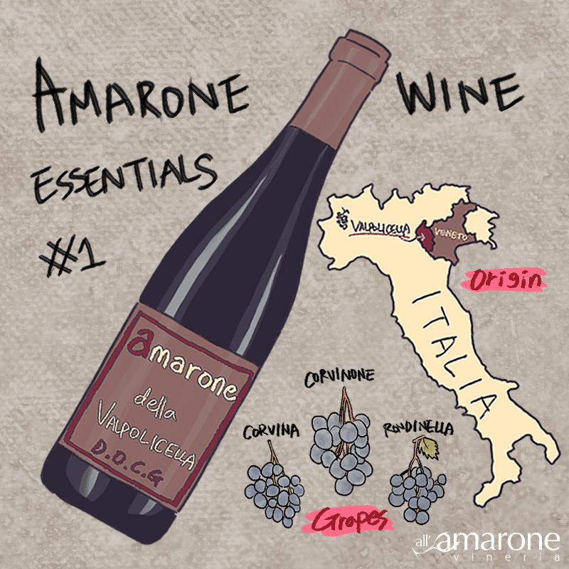 Amarone Wine Essentials