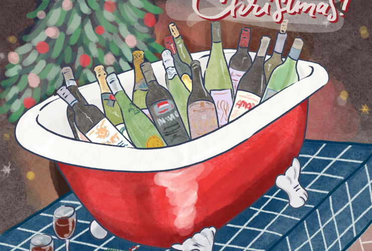 Selezione Bottiglie per Natale e Capodanno