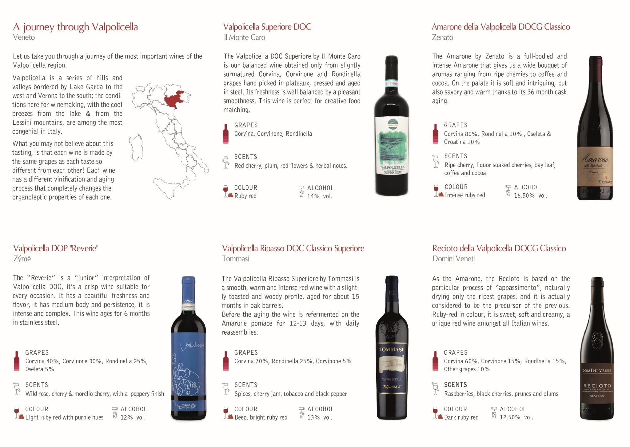 Valpolicella Journey Wine Tasting Venice
